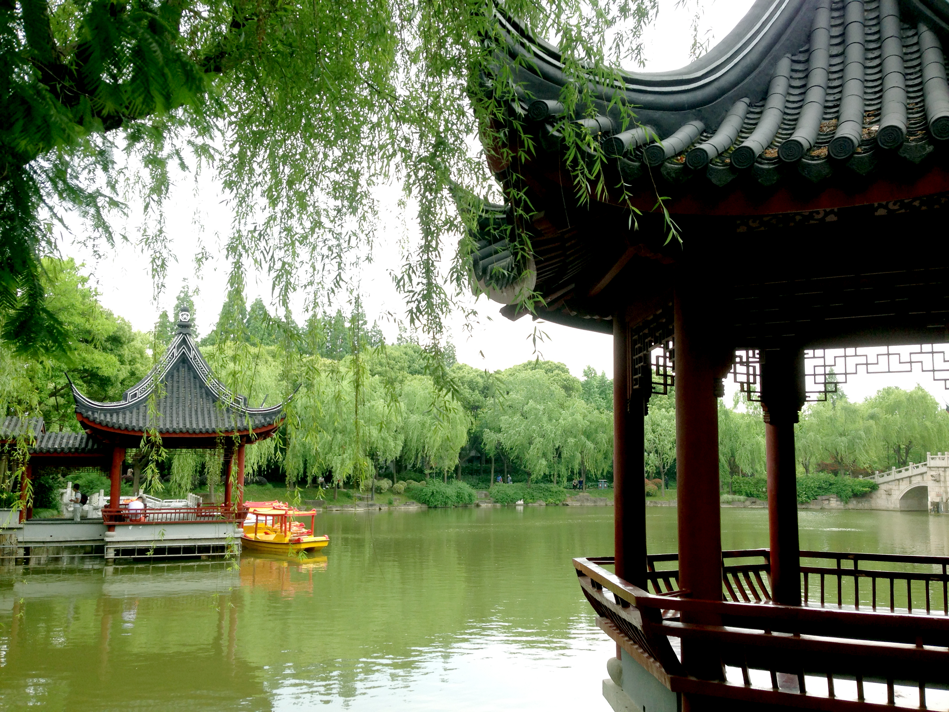 An oasis of tranquility