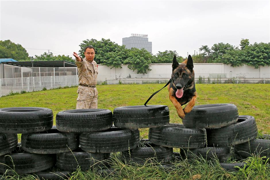 The top dogs on the police force