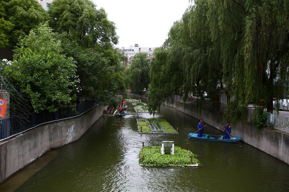 Clean waterways enrich green lifestyle planning