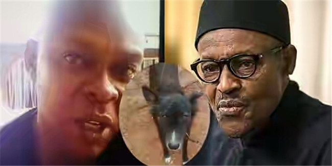 Case dropped against Nigerian who named his dog 'Buhari'