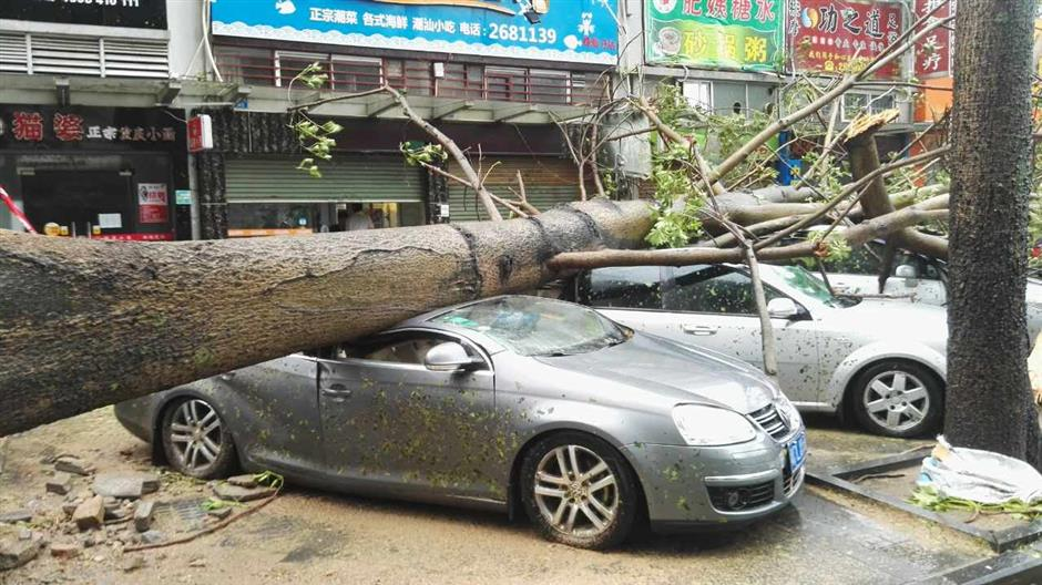 Death and destruction as Typhoon Hato hits