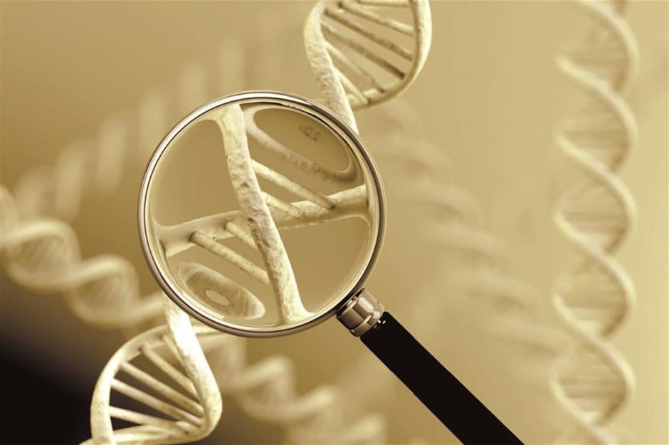 DNA test results may not change health habits