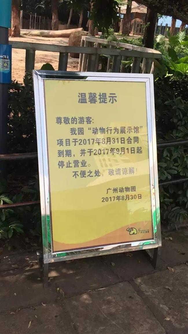 Guangzhou Zoo stops animal circus show after 24 years