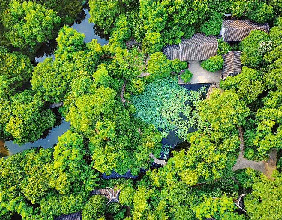 Jiading's ancient gardens springing back to life