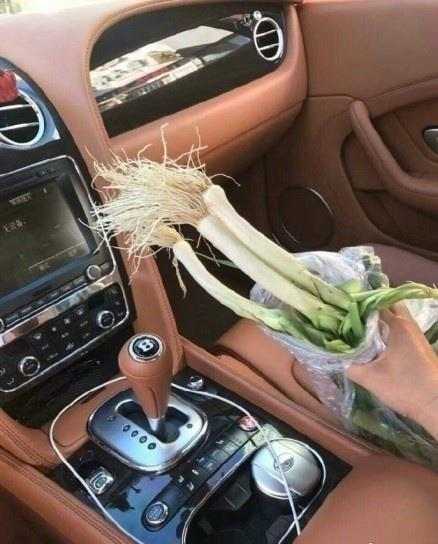 Elderly man gives Bentley owner scallions as compensation for collision