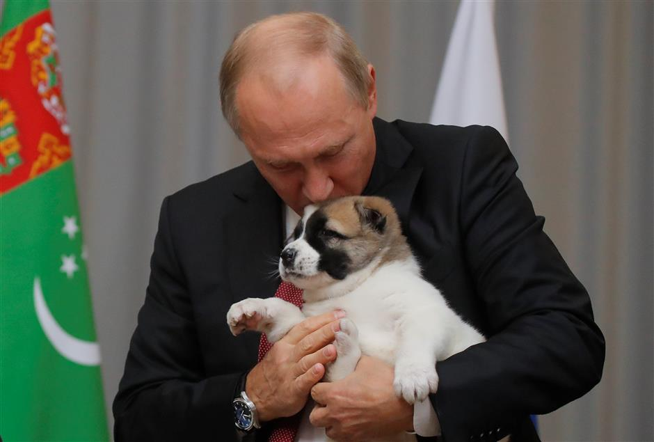Dog lover Putin gets top breed pup as gift from Turkmen leader