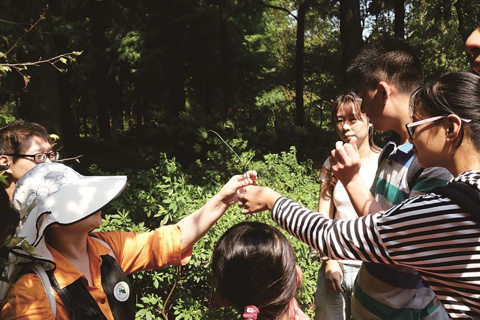 Bioblitz offers nature lovers fun adventure