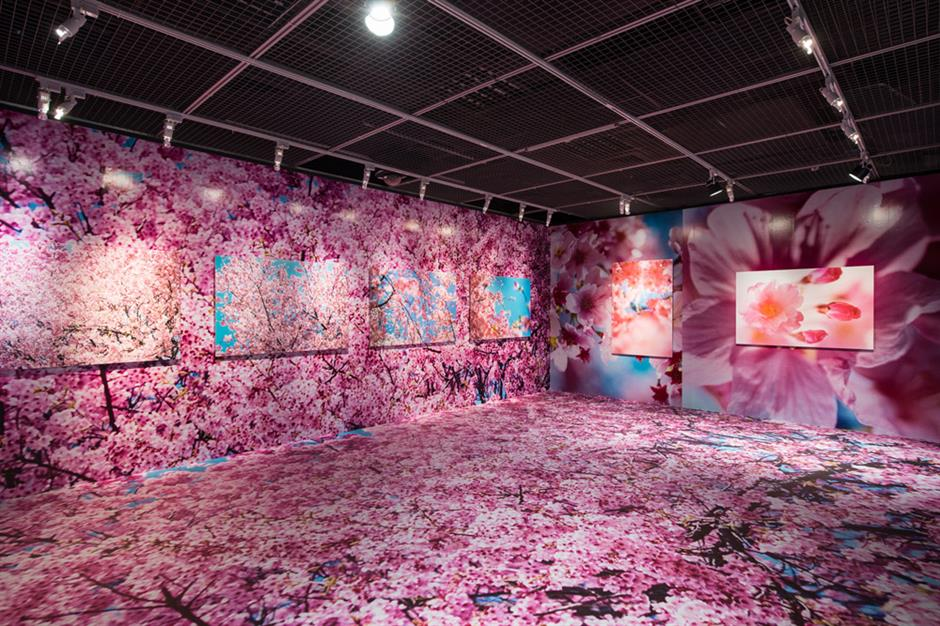 Mika Ninagawa: a vibrant Japanese artist of many faces