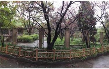 Shanghai Zoo to recreate an East China wetland