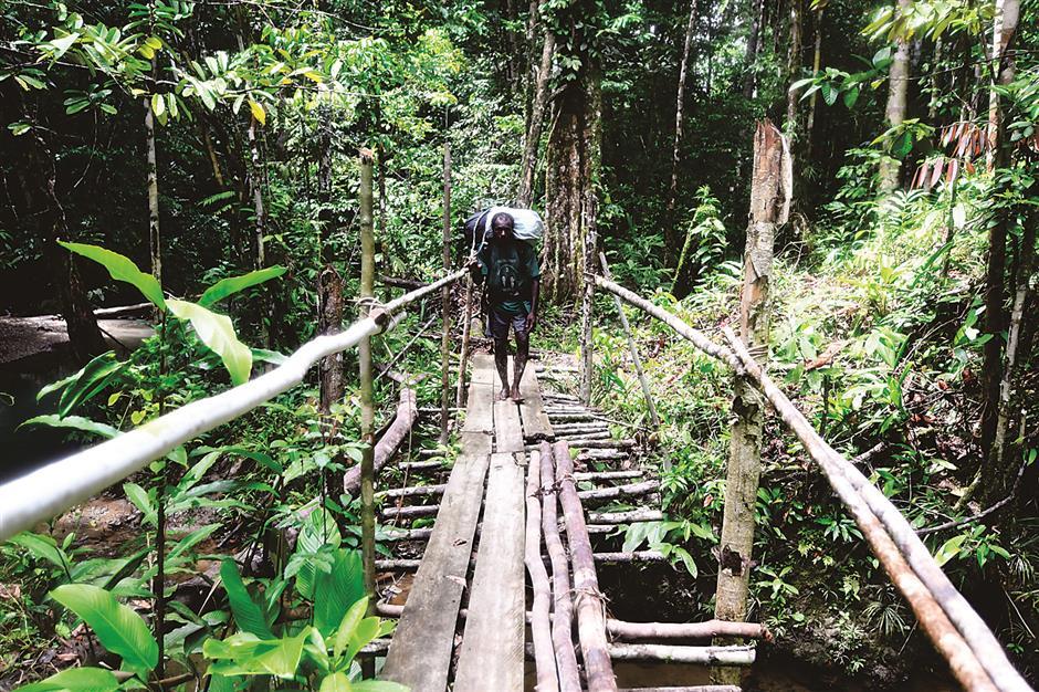 Papua's paradise under threat