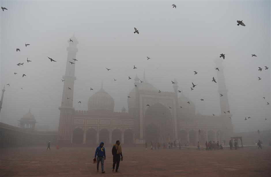 Smog closes all Delhi's schools