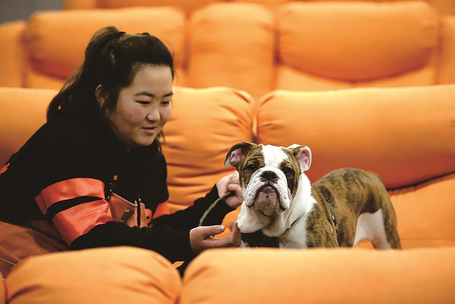 Pampered pooches spark big deals