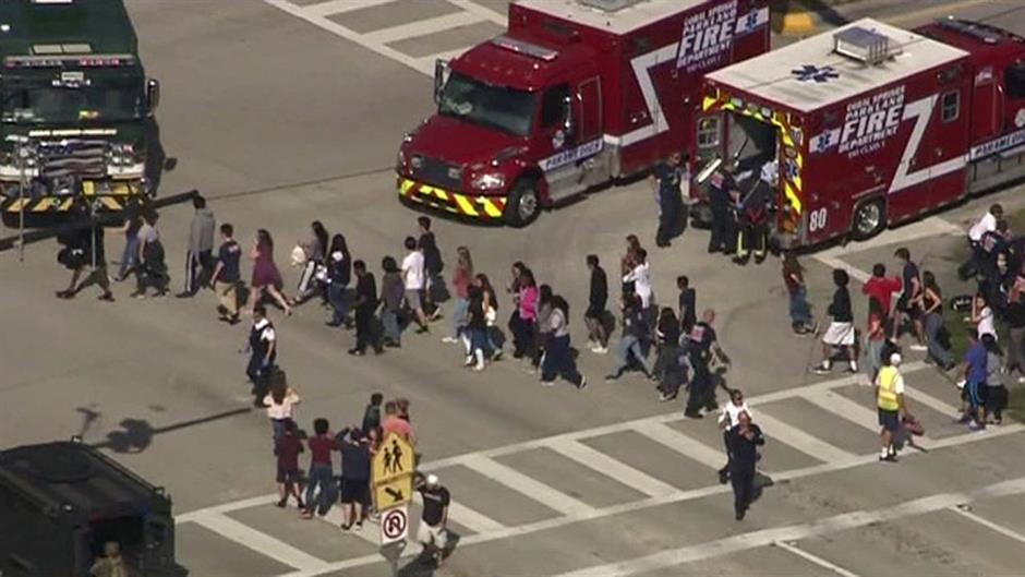 Ex-student kills 17 in shooting spree at Florida high school
