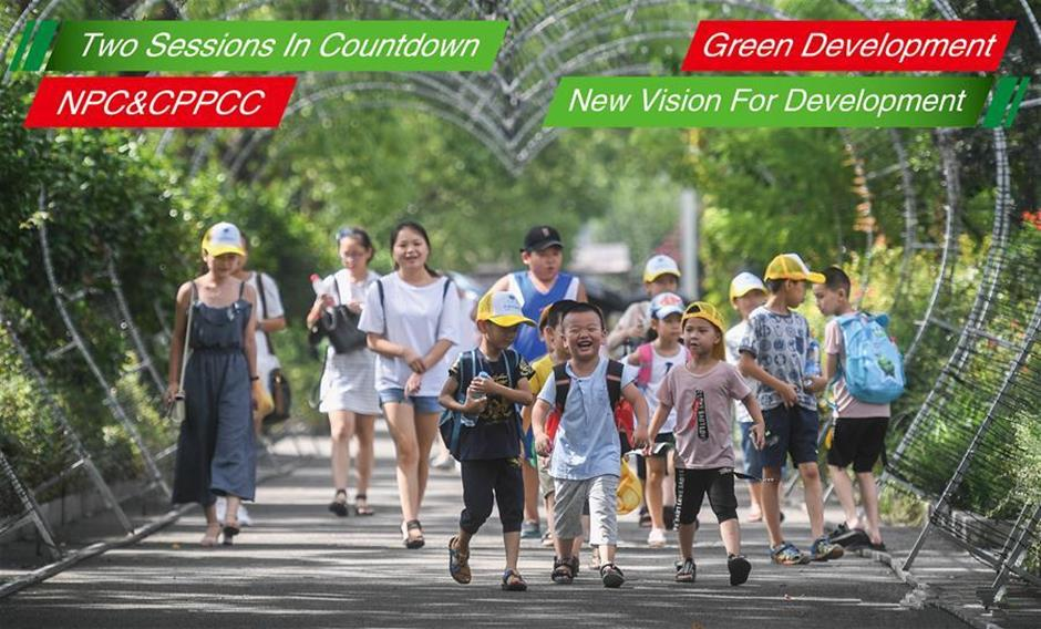 China's new vision for development: green development