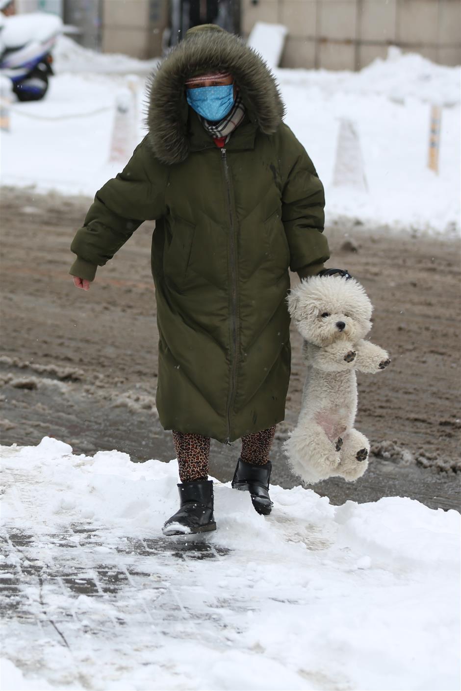 Heavy snow disrupts traffic in NE China