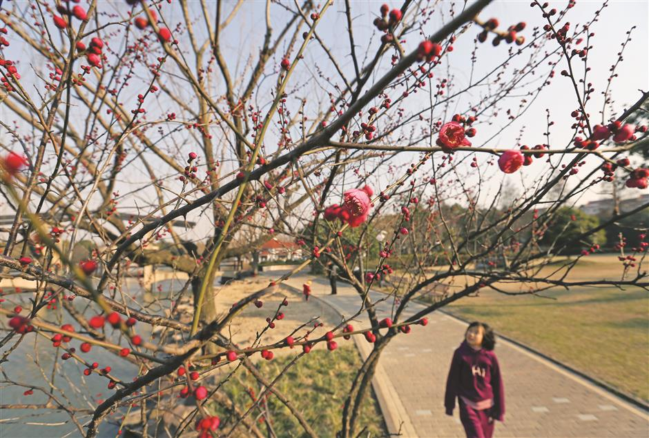 District's scenic sites attracting thousands
