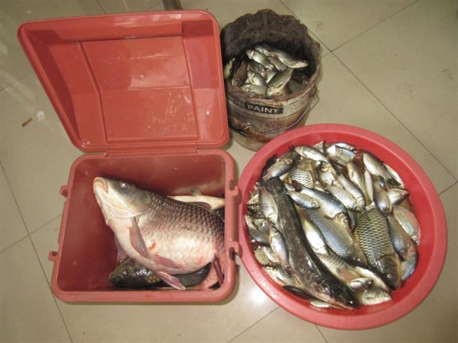 Police crack down on illegal fishing during ban period