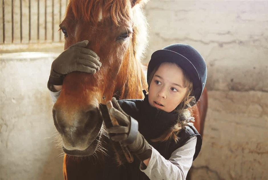Saddle up until you are horse with noble language of equestrianism