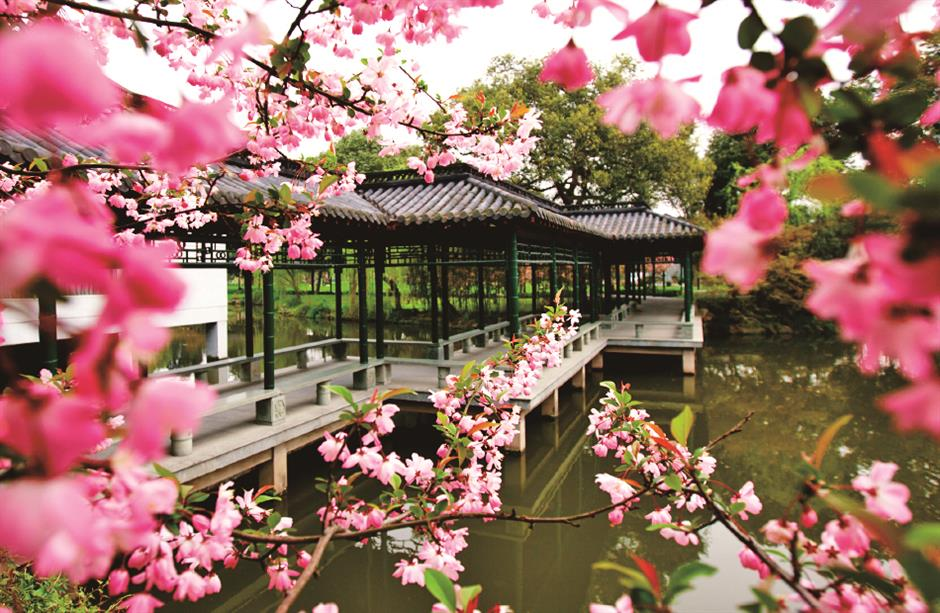 Hangzhou gardens standing the tests of time