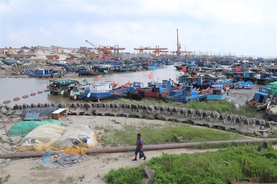 Sanjia Harbor prepares for coming typhoon Ampil