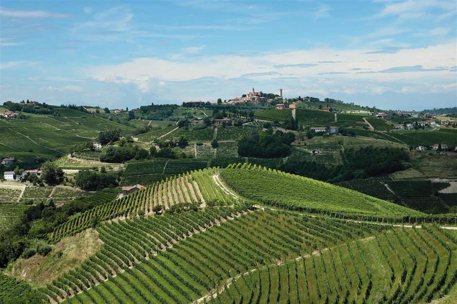 Monferrato, an idyllic oasis of vineyards