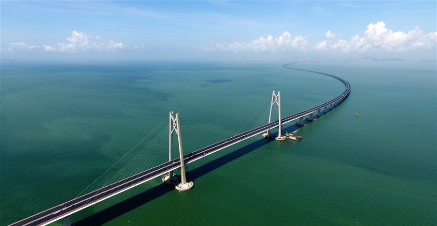 China to keep closer eye on endangered dolphins under epic bridge