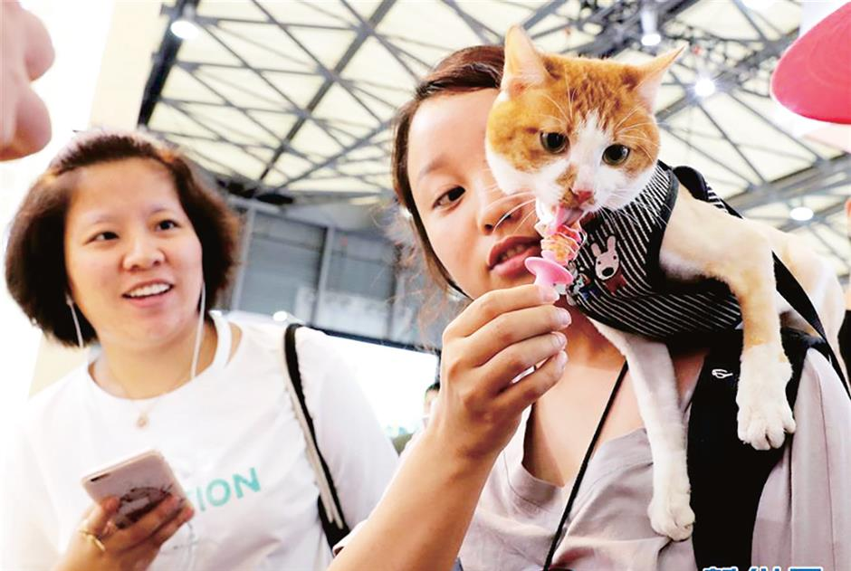 Fair puts pet owners in cat and dog heaven