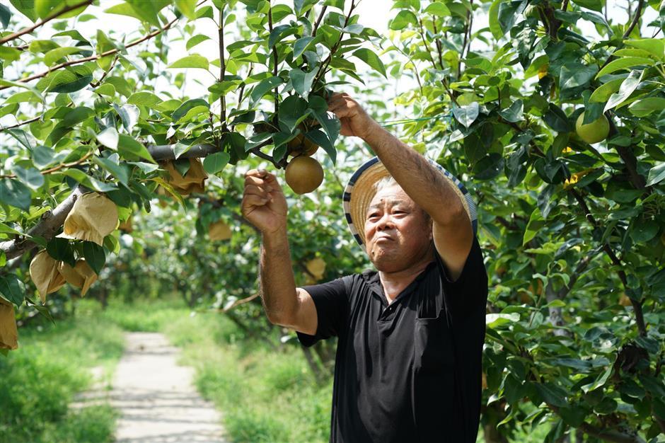 Villagers raising prosperity through beauty