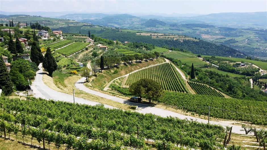 Valpolicella is a fine Valentine wine for romantics