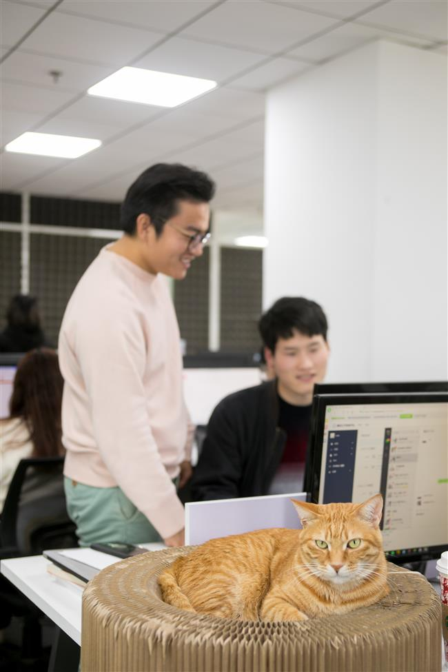 Shanghai Entrepreneurs: The man behind Molly Box