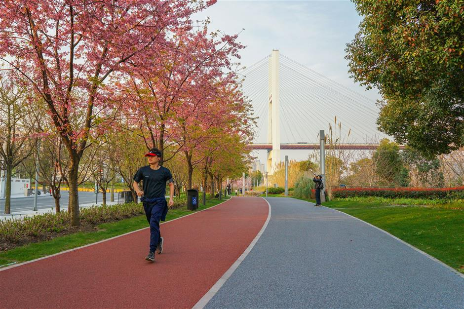 Best path to the future is alonga greenway