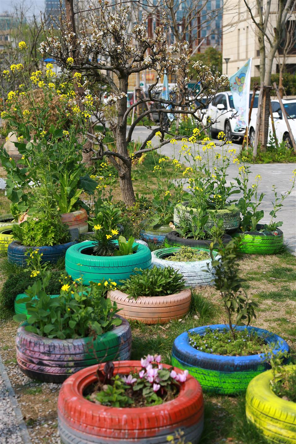 It's the nature of things: Community gardens relieve urban pressures