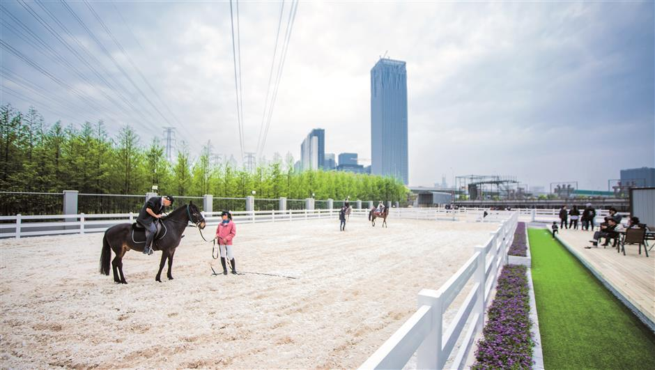 Young riders sit tall in the saddle