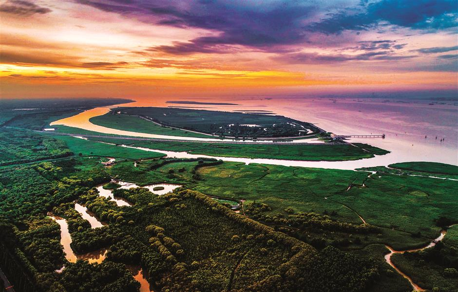 Welcome to Chongming Island, a paradise of sports and nature a stone's throw away