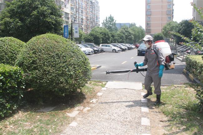 City launches anti-mosquito campaign