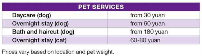 The one-dog policy, and other fun facts about having pets in Shanghai