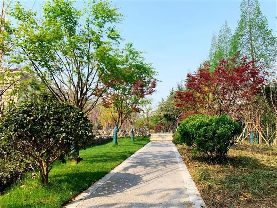 More pocket parks for city