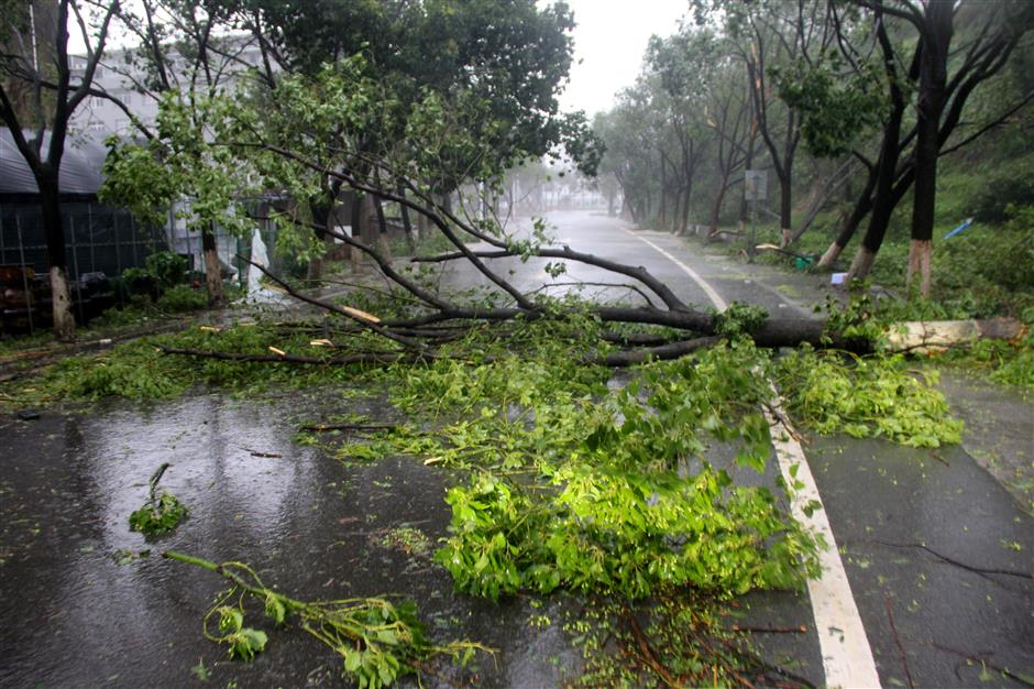 Around 1m people relocated in eastern China as Typhoon Lekima strikes