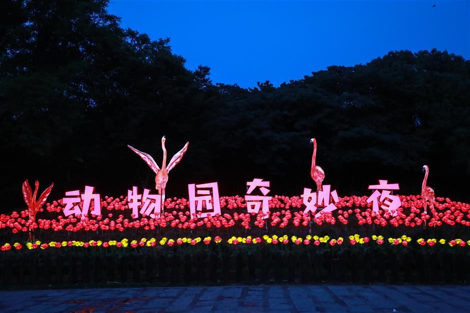 Pudong really coming alive at night