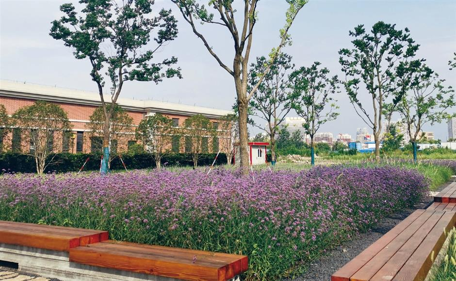 Scenic footpath a reminder of China's industrial heritage