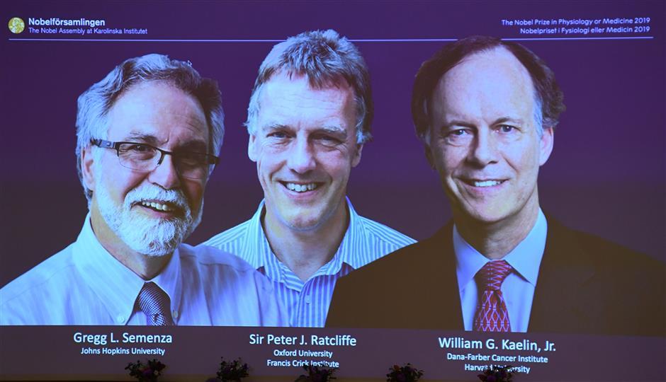 3 researchers share Nobel Medicine Prize on study of oxygen on body