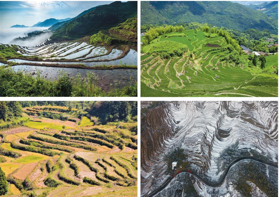 Getaway amid a dreamscape of rice paddies