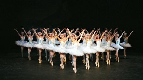 State Ballet of Georgia to perform 'Swan Lake' - SHINE