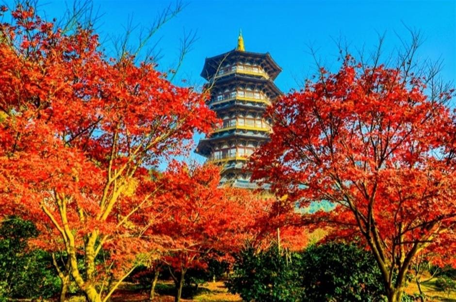Ningbo's Beilun District extends tourism cooperation with Shanghai