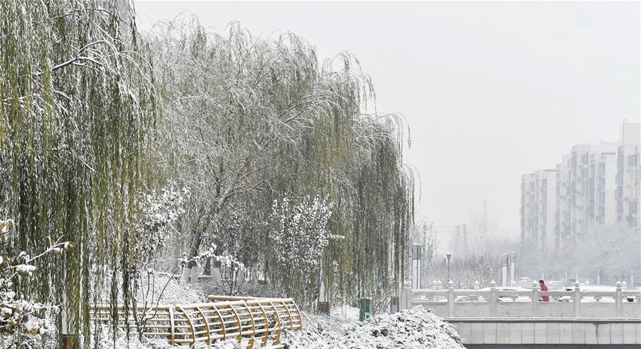 Beijing embraces timely first snow