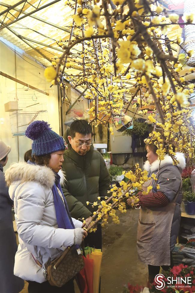 City enters into spirit of the Spring Festival