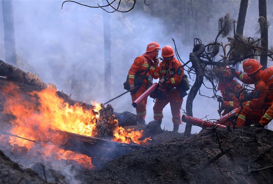 19 dead battling southwest China forest fire