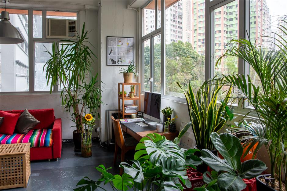 Dynamic couple's cool, collected, wide-open space
