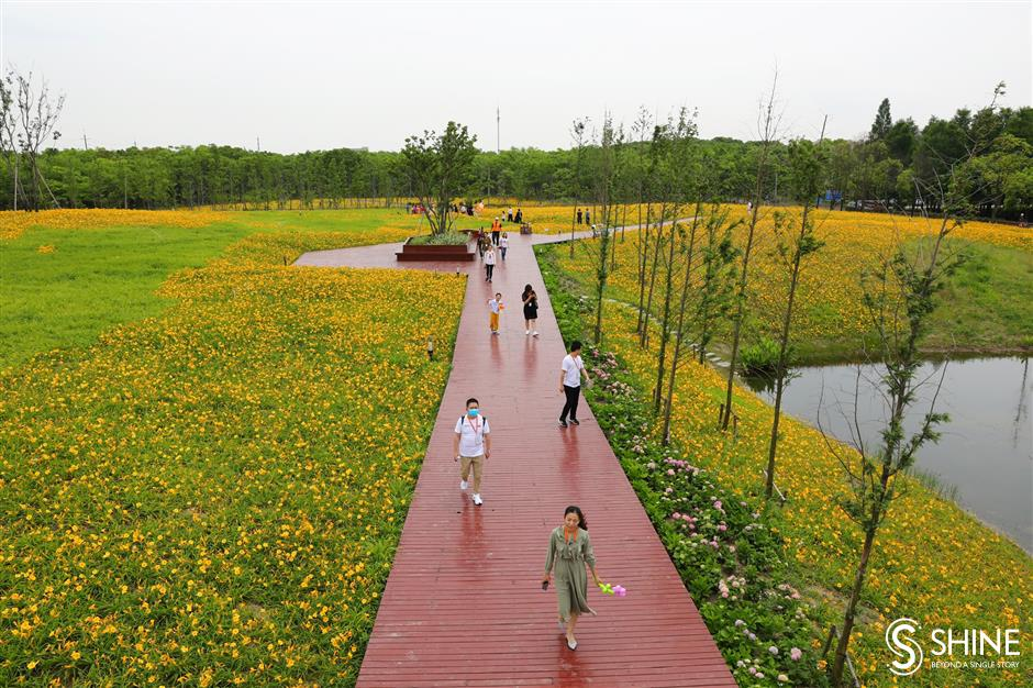 Baoshan medical workers first to enjoy 'Mother's Flower Culture Festival'