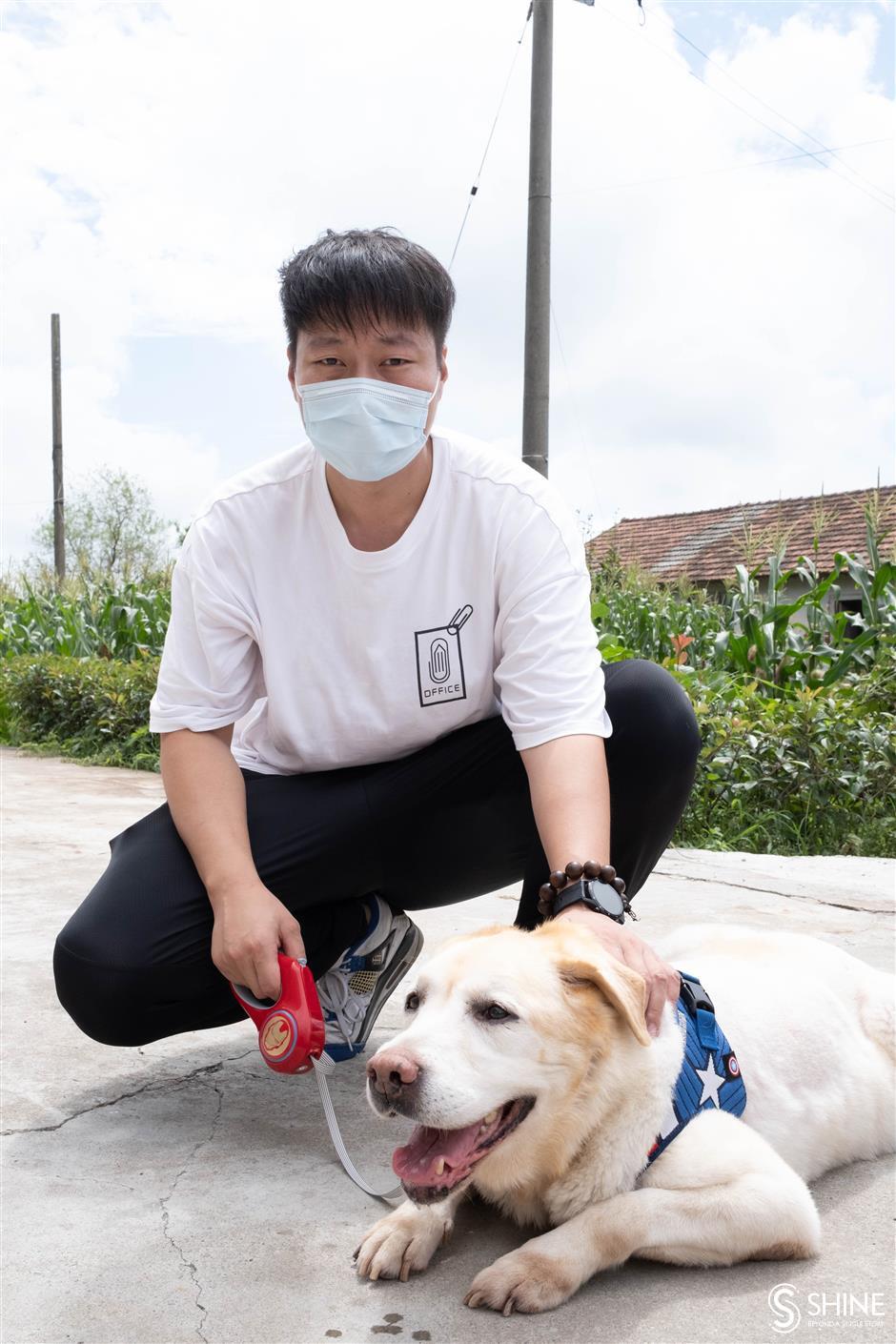 Frappez un patch pour les chiens-guides retraités pour trouver un foyer